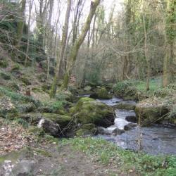 Ruisseau Le Tronchet