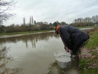 Plan d'eau de Betton